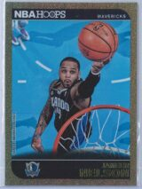 Jameer Nelson Panini NBA Hoops 2014-15  Gold